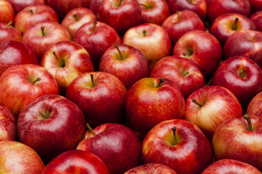 Reid's Apple Festival